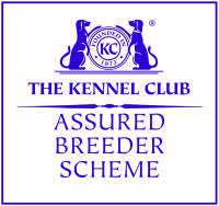 Kennel Club Assured Breeder Scheme.